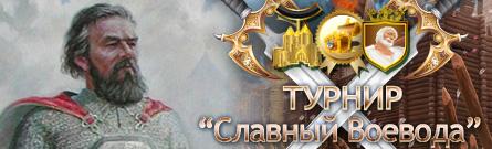 """Турнир """"Славный воевода"""" на Зеленом материке"""